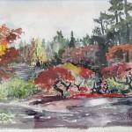 VanDusen Gardens Vancouver